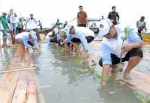 Penanaman Mangrove Bersama dan Pengembangan Potensi Ecowisata Mangrove