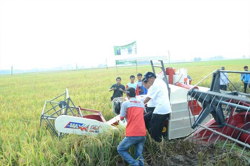 Menteri Pertanian Republik Indonesia Lakukan Panen Raya di Kota Metro 2
