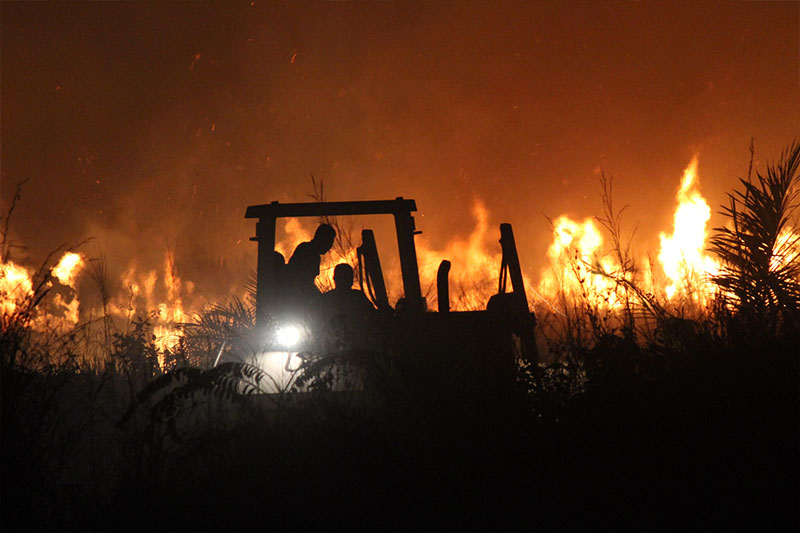 Satgas Kompi Zeni TNI Berhasil Atasi Kebakaran Lahan di Afrika Tengah