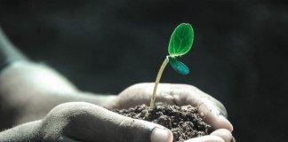 Konservasi Tanah Pertanian? Apa Sebenarnya itu?