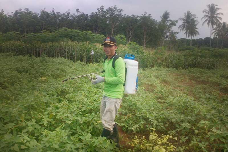 Hendi Sutarno, Sosok PNS yang Gemar Berkebun