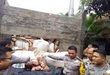 Tertangkap Bawa Daging Celeng WR Gagal Lebaran Dengan Keluarga
