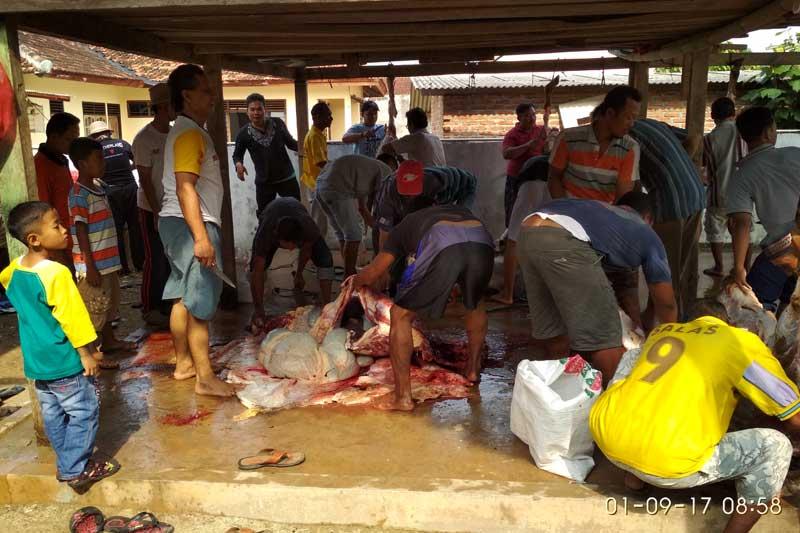 Masjid Nurul Iman Tejoagung Budayakan Musyawarah Untuk Mufakat Dalam Hal Pendistribusian Daging Kurban 01