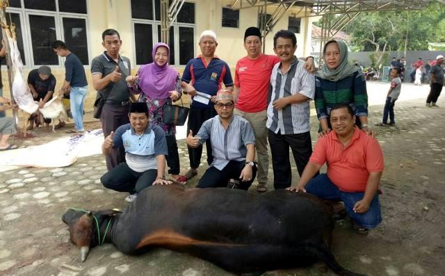 Idul Adha 1438 H, DPRD Kota Metro Sembelih 3 Sapi dan 1 Kambing