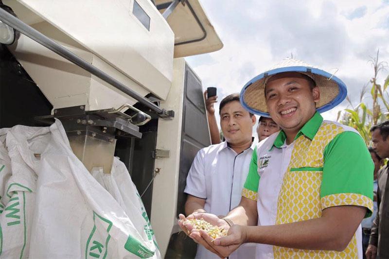 Kementerian-Pertanian-Akui-Provinsi-Lampung-Capai-Swasembada-Padi-dan-Jagung-di-201701