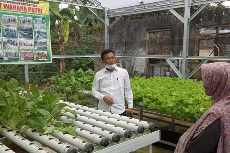 Senang Melihat Kemandirian Ekonomi Warga, Heni Susilo Borong Sayuran Hidroponik KWT Wahana Putri